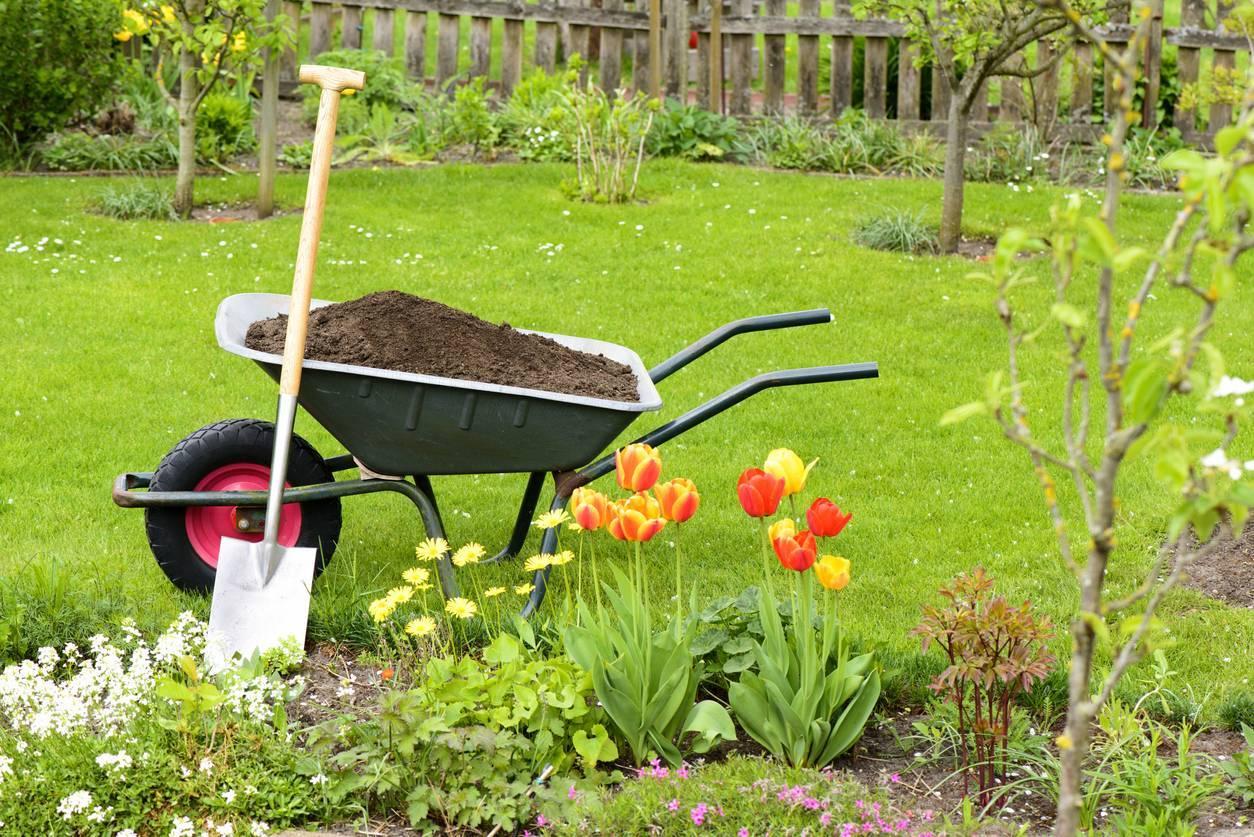 jardin intervention paysagiste