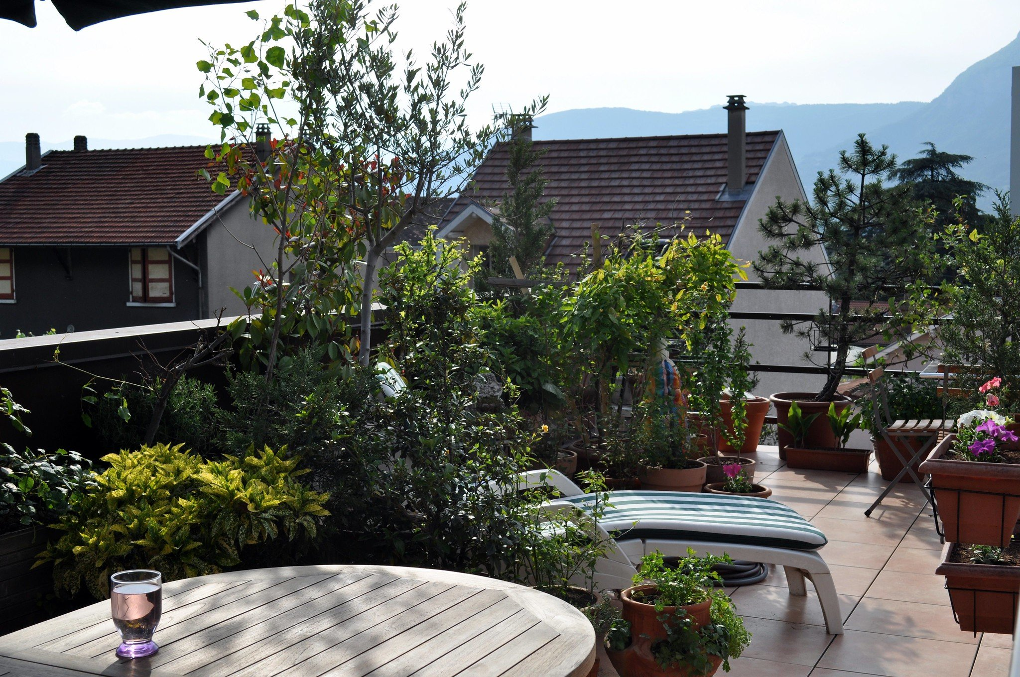 carré potager sur une terrasse