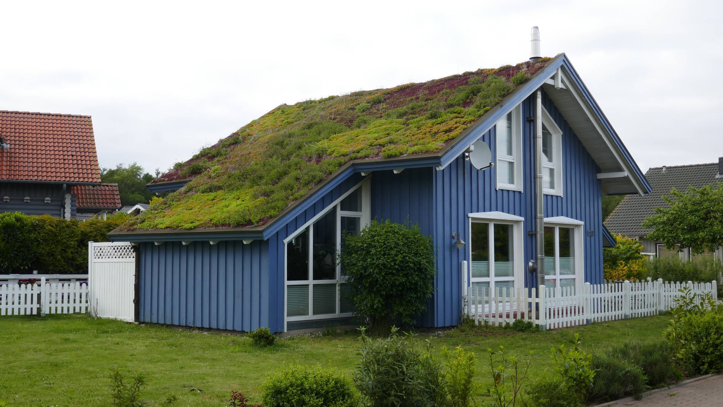 toiture toit végétalisé entretien
