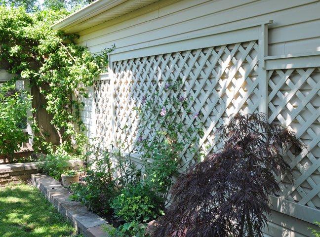 treillis mur jardin